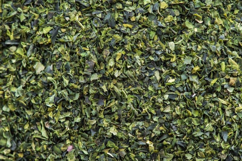 Detail macro of Aonori dried seaweed flakes stock photo