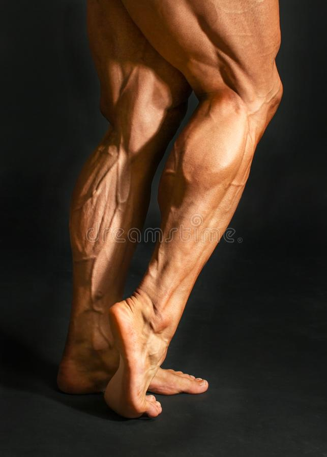 Detail of male bodybuilder back leg calf muscles on black backgr. Ound. Gastrocnemius and soleus stock photos