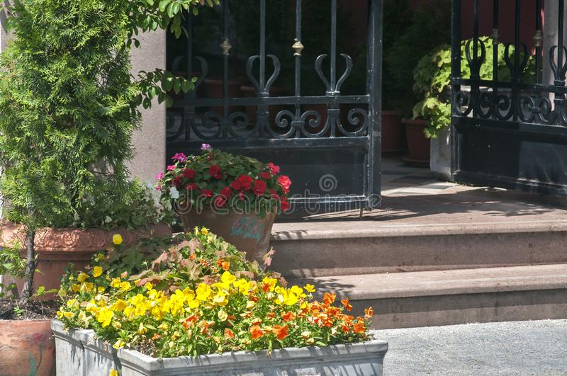 Detail of metal ornamented garden gate. With stairs and big pots with decorative plants stock photo