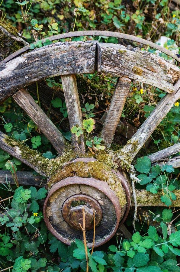 Old Abandoned Wagon royalty free stock photos