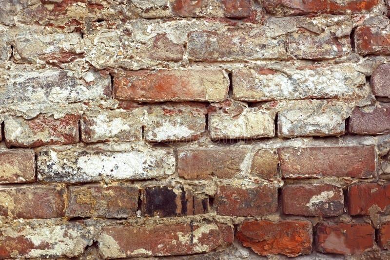 Detail of old brick wall royalty free stock photo