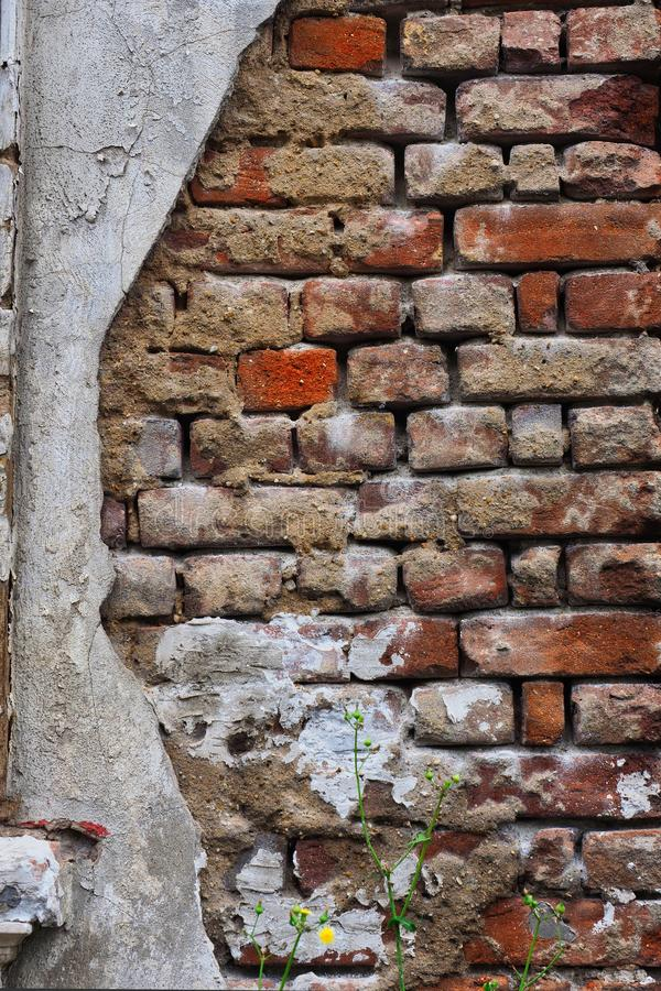Exposed Brickwork on Old External Wall. Detail of an old external house wall with render removed exposing historical rough brickwork. Illustrates typical stock images