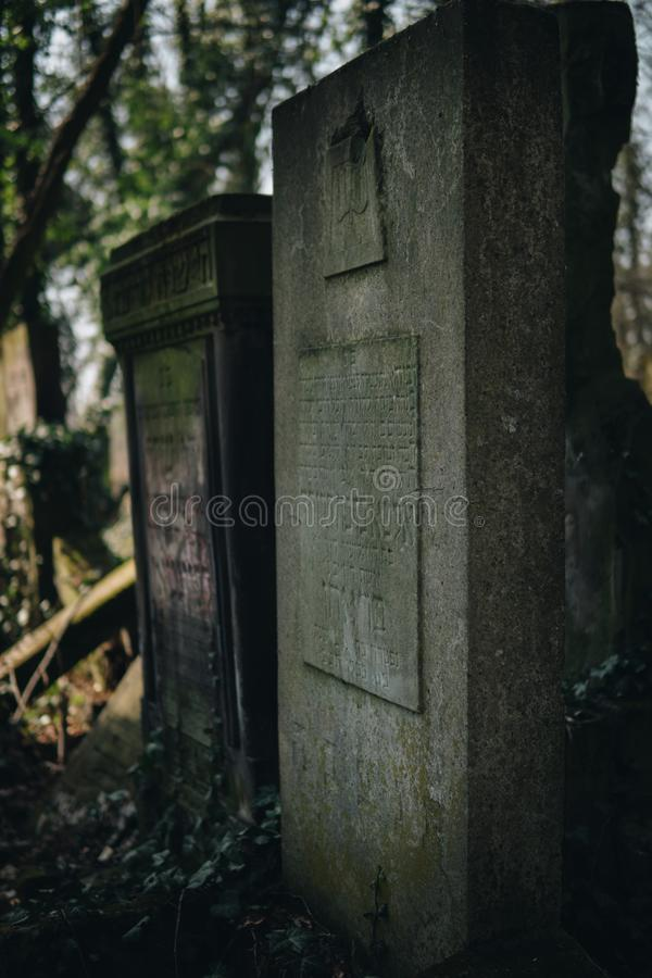 Detail of old jewish matzevah. Detail of old jewish tombstones on cemetery in city of Czestochowa in Poland graveyard historic religion religious death judaism stock photo