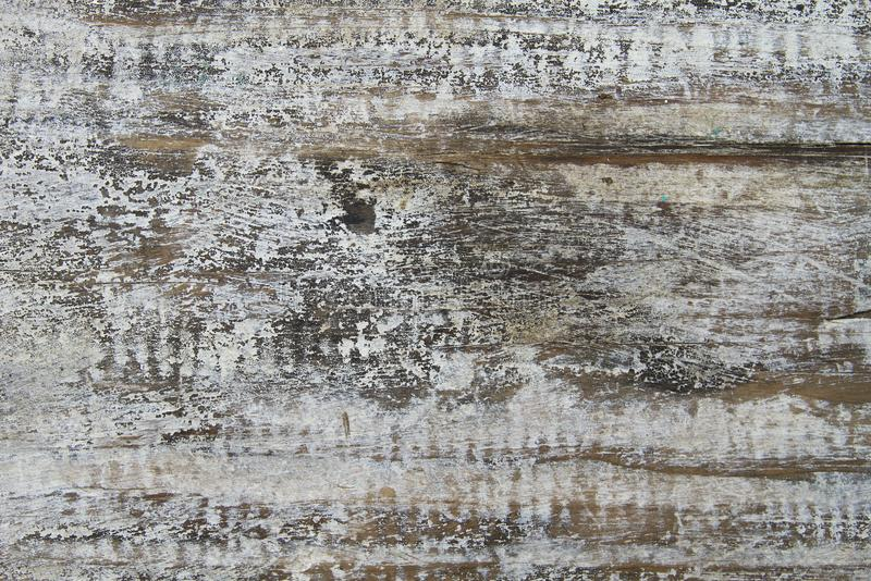 Old painted timber texture or background. Detail of old wooden blackground or texture stock image
