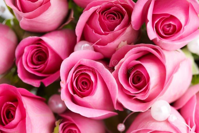 Detail op de roze rozen stock afbeelding