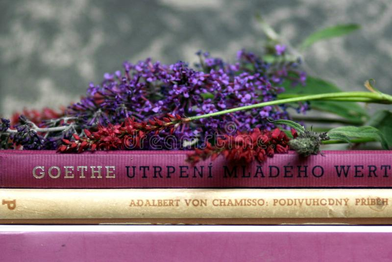 Romantic books and flowers summer Goethe reading stillife. Detail of pink, rose, purple  and beige romantic books with summer flowers stillife stock photography