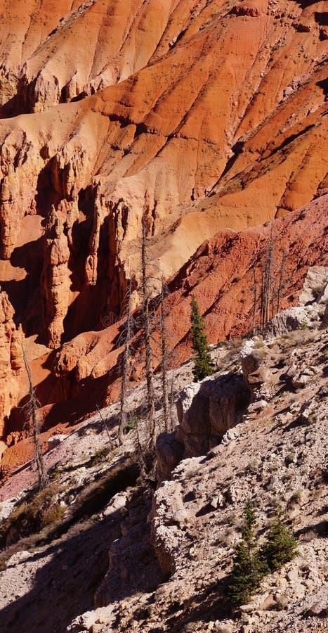 Detail, pinnacles and hoodoos of red Navajo sandstone royalty free stock image