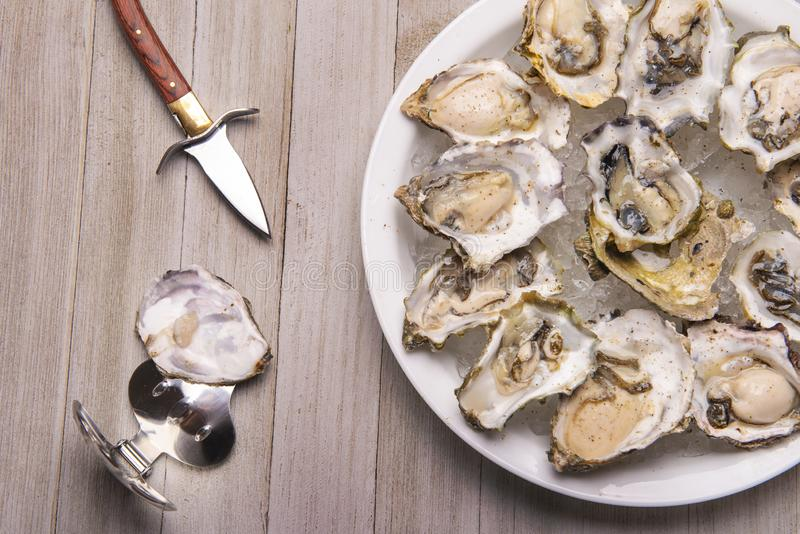 Fresh shucked oysters plate over wood background royalty free stock photo