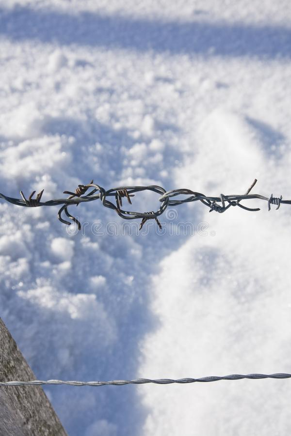 Detail of rusty razor wire with snow in background.  royalty free stock photography