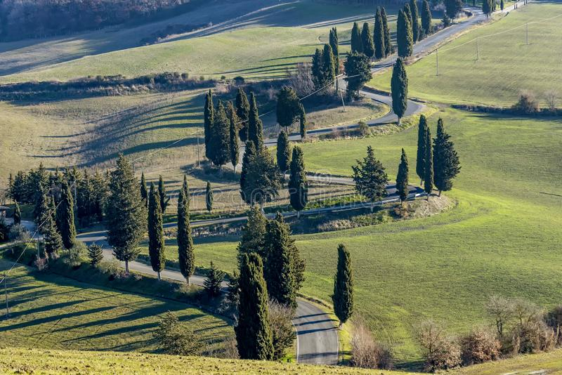 Detail of scenic road edged by cypress trees in the Tuscan countryside near Monticchiello, Siena, Italy stock photos