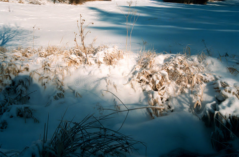 Download Detail of snowy landscape stock image. Image of season - 3339643