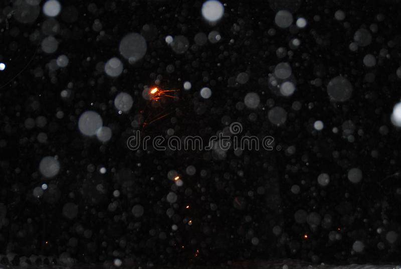 Detail of softly falling snowflakes royalty free stock photo