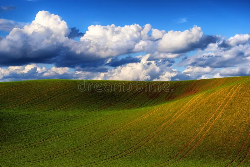 Detail of South Moravian field, Czech republic. Beautiful spring scenery. Detail of South Moravian field. Colorful hill in Czech landscape during sunset, Czech royalty free stock image