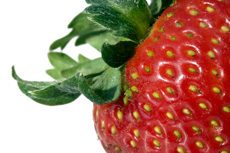 Detail of a strawberry royalty free stock image