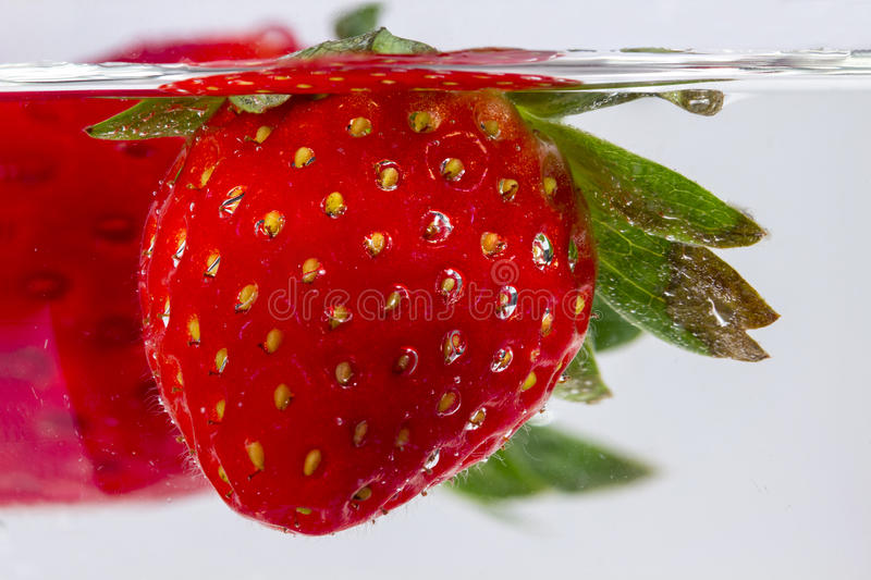 Detail of strawberry submerged into a water glass. Washing strawberry fruits, submerged into a water glass, on white background royalty free stock image