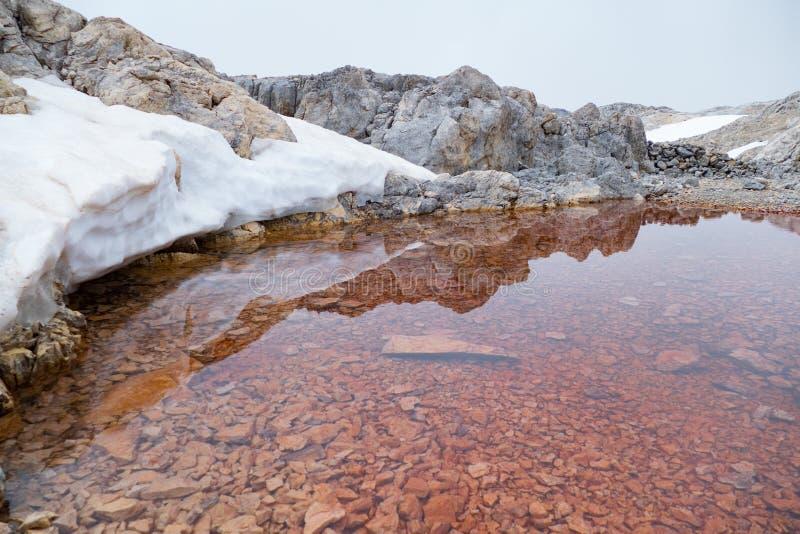 Detail of a tiny alpine lake stock image