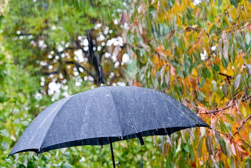 Detail of umbrella stock photography