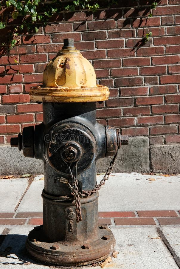 US fire hydrant seen on a sidewalk in downtown Boston, MA. royalty free stock photography