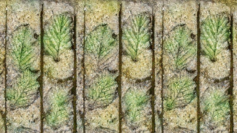 Detail van blad gestempeld patroon op cementgang in tuin stock afbeelding