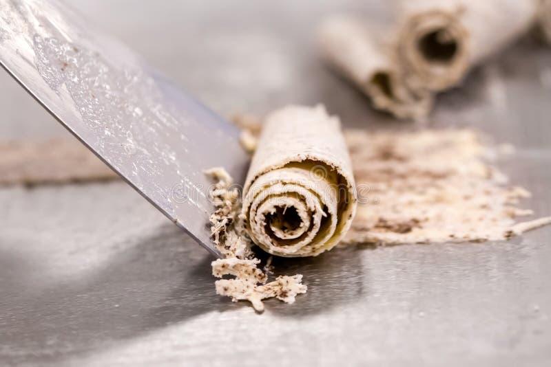Detail van chocolade bisquit gerold roomijs op koude plaat royalty-vrije stock foto