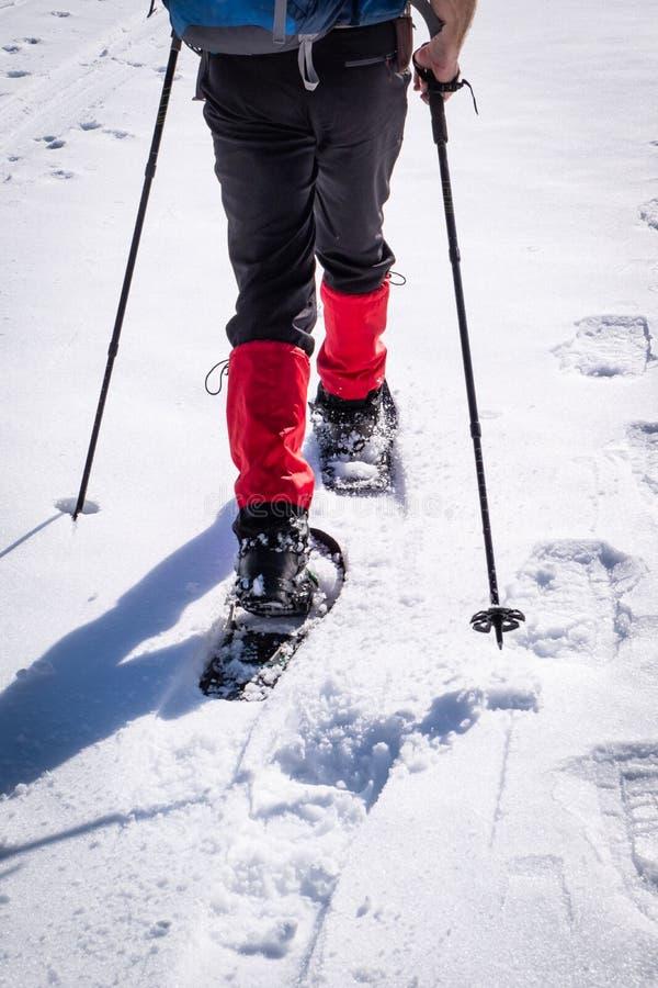 Detail van de mens die met sneeuwschoenen door sneeuw op winterday wandelen stock foto's