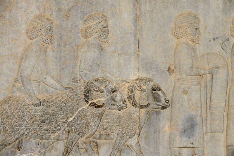 Detail van een hulp in Persepolis in Iran royalty-vrije stock afbeeldingen