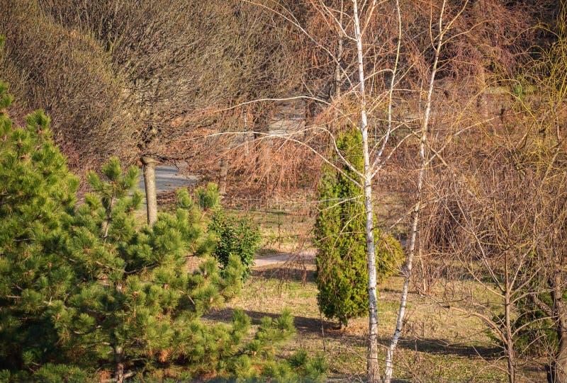 Detail van een klein park royalty-vrije stock foto's