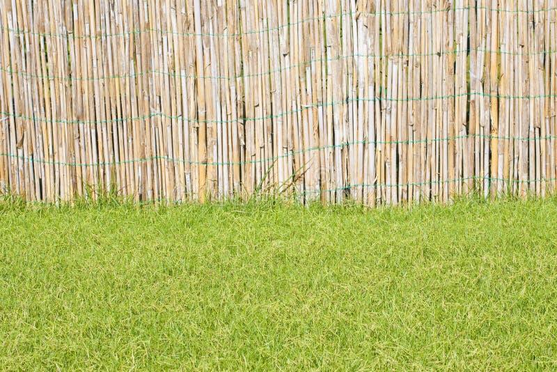 Detail van een mooi groen gemaaid gazon met lathwork royalty-vrije stock foto