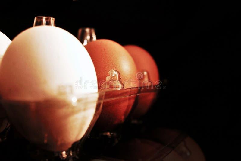 Detail van een pakket van eieren dat gewoonlijk in elke supermarkt wordt gevonden Zwarte achtergrond stock foto's