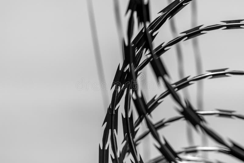 Detail van een prikkeldraadomheining Zwart-wit beeld stock afbeelding