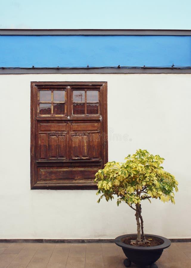 Detail van een typische voorgevel van een plattelandshuisje met venster en een installatie in Garachico, Tenerife, stock foto