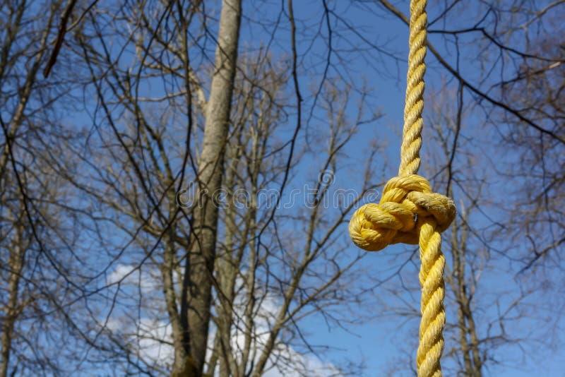 Detail van geel kabel klimrek voor kinderen en volwassenen in het beklimmen van het kabelpark bij de zonnige dag stock afbeeldingen
