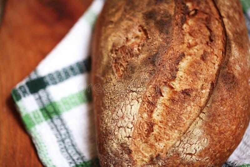 Detail van het gebakken brood van de zuurdesem spelf bloem met aardige korst royalty-vrije stock foto