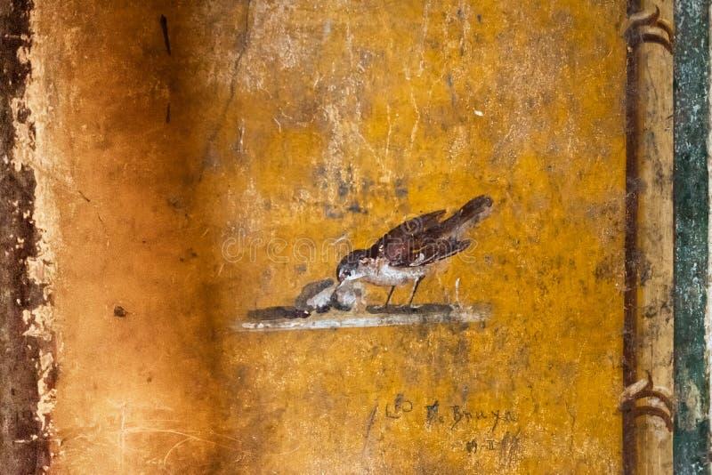 Detail van oude fresko van een vogel in een huis in Pompei royalty-vrije stock foto's