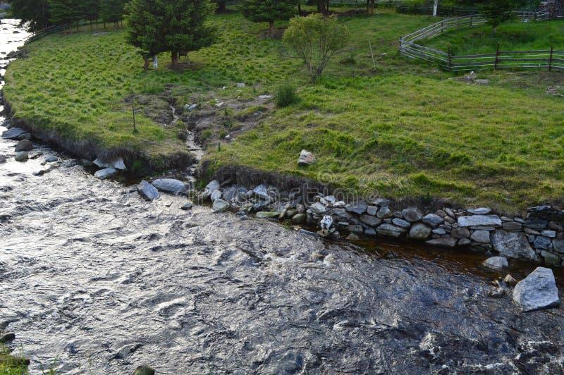 Detail van rivier stock afbeeldingen