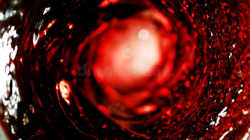 Detail van rode wijnroes royalty-vrije stock foto's
