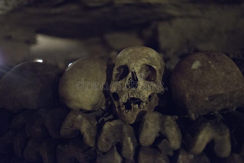 Detail van Schedel in Parijs Cataombs royalty-vrije stock foto's