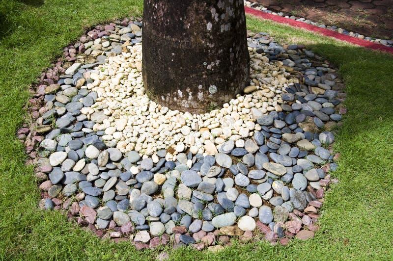Detail van tropische tuin in Boracay royalty-vrije stock foto