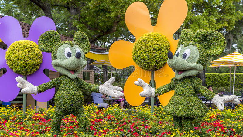 Detail view of Disneys Micky and Mini flower chara. Close up detail of topiary Micky and Mini from Disneys Epcot theme park in Florida royalty free stock photo