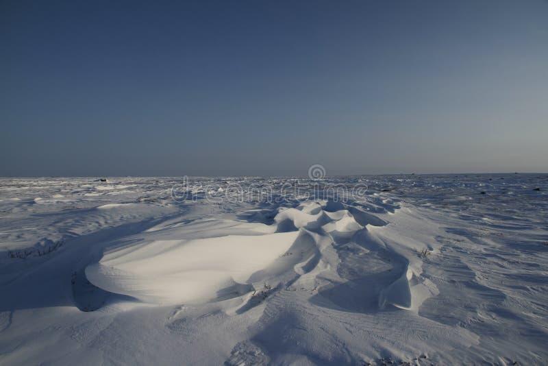 Detail view of Sastrugi, wind carved ridges in the snow, near Arviat, Nunavut. Winter scene stock photography