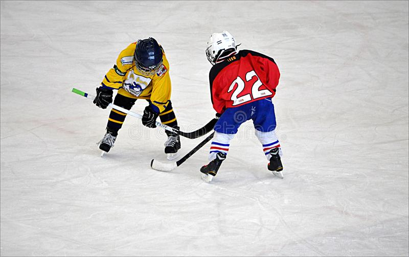 Small childrens and hockey royalty free stock photos