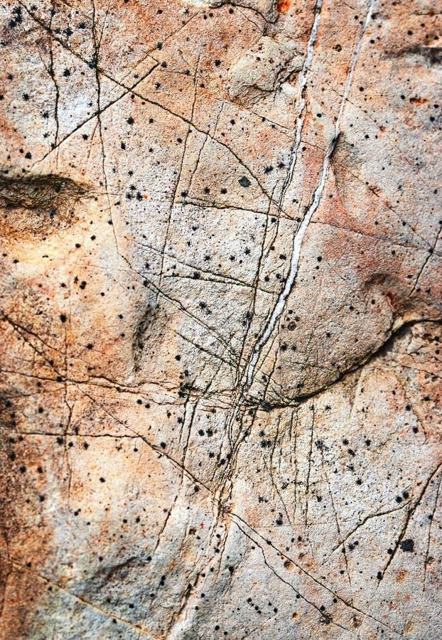 Detail von abstrakten Linien auf altem Kalksteinfelsen lizenzfreies stockbild