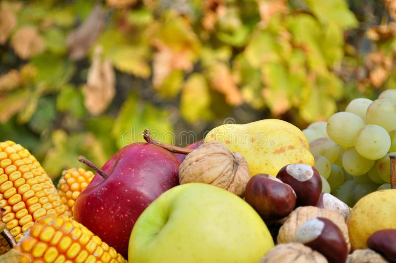 Detail von bunten Herbstobst und gemüse - stockfotos