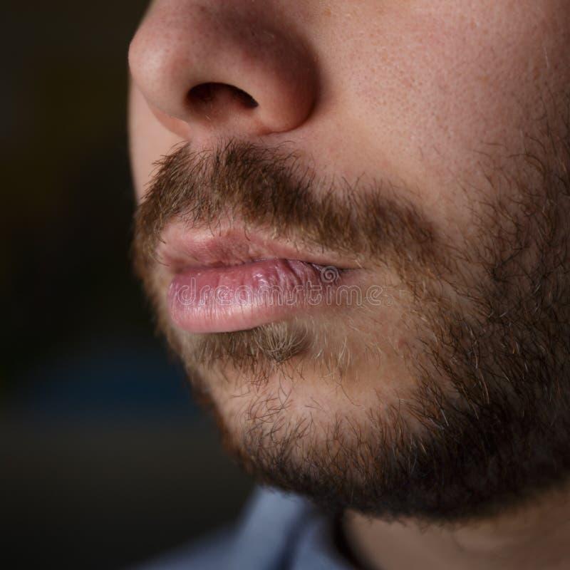 Detail von schädigenden Lippen eines jungen Mannes mit Bart stockfotografie
