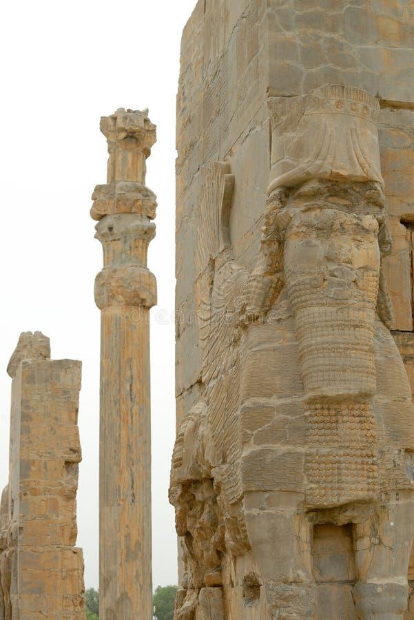 Detail von sculpturesof Persepolis, der Iran stockbild