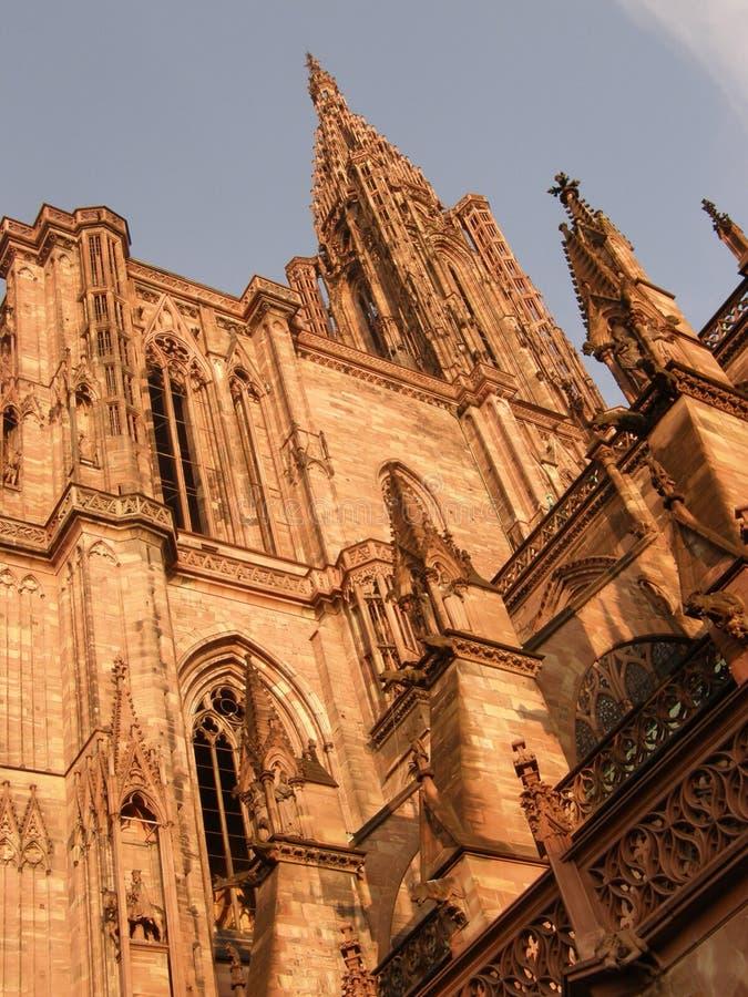 Detail von Straßburg-Kathedrale stockbilder