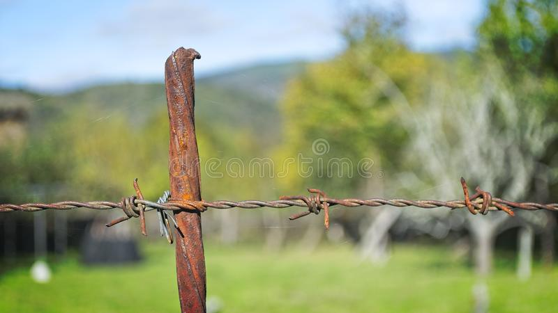 Wire fences in San Paio de Abeleda, Ourense. Detail of a wire fences in San Paio de Abeleda, Ourense royalty free stock images