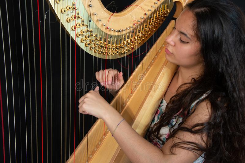 Detail of a woman playing the harp royalty free stock images