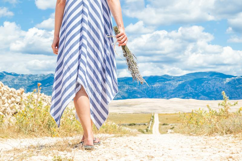 Detail of woman in summer dress holding bouquet of lavender flowers while walking outdoor through dry rocky stock image