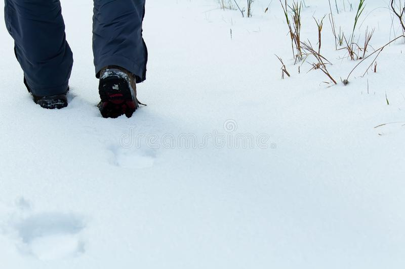 Detail of young man, hiker shoe steps in clear snow royalty free stock images